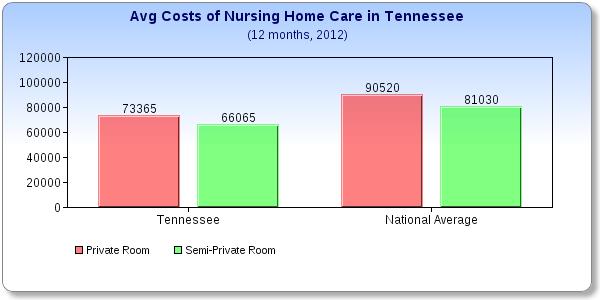 Nursing Home Care Cost Per Day
